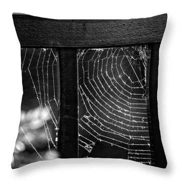 Wonder Web Throw Pillow by Carrie Ann Grippo-Pike