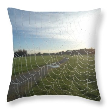 Wonder Web Throw Pillow