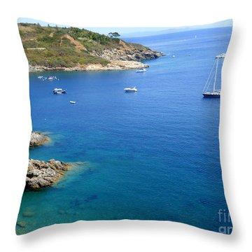 Wonderful Blue Throw Pillow by Ramona Matei