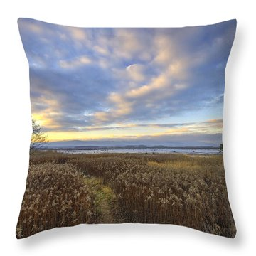 Wonderful Sunset Throw Pillow