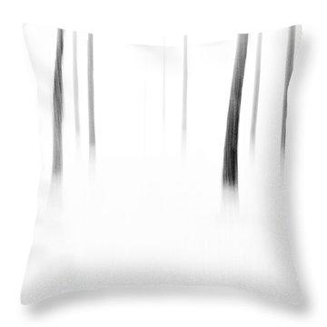 Wonderland Throw Pillow by Scott Pellegrin