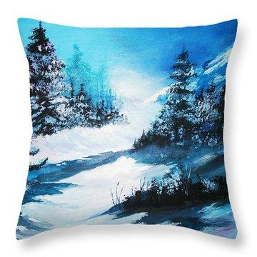 Wonders Of Winter Throw Pillow