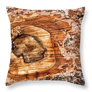 Wood Detail Throw Pillow