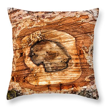 Wood Detail Throw Pillow