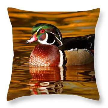 Wood-drake On The Golden Light Throw Pillow