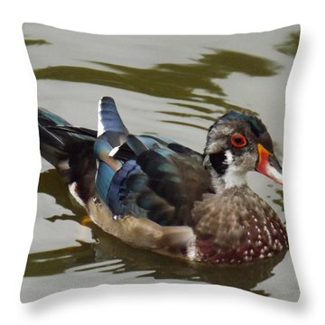 Wood Duck Throw Pillow by Brenda Brown