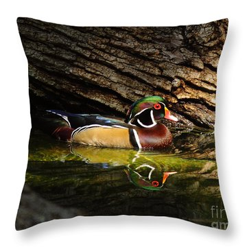 Wood Duck In Wood Throw Pillow by Robert Frederick