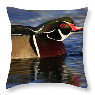 Wood Duck Waterdrops Throw Pillow