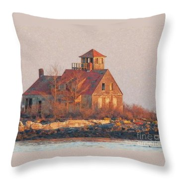 Wood Island Throw Pillow