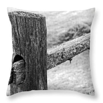 Wood Railing Throw Pillow