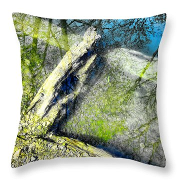 Wood Reflections Throw Pillow by Olivier Le Queinec