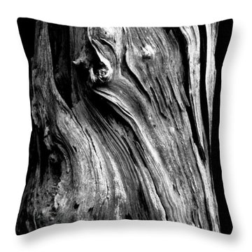 Wood Throw Pillow by Shane Holsclaw