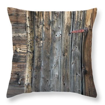 Wood Shed Door Throw Pillow