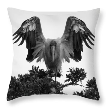 Wood Stork Spread Throw Pillow