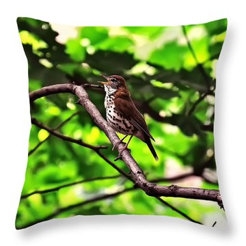 Wood Thrush Singing Throw Pillow