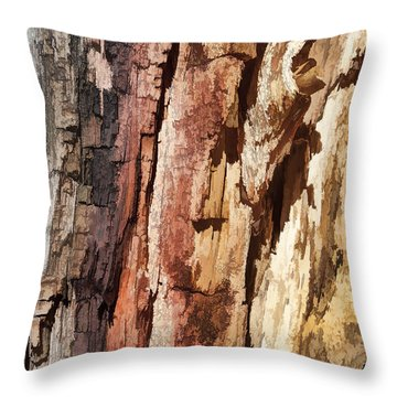 Wood Tones Throw Pillow