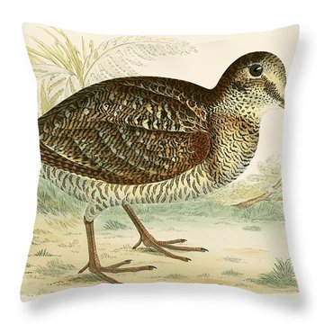 Woodcock Throw Pillow by Beverley R Morris