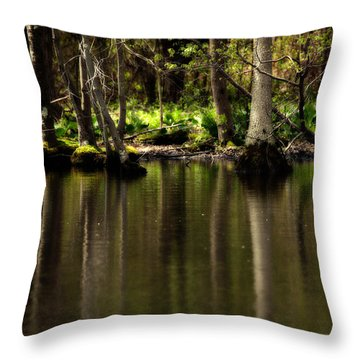 Wooded Reflection Throw Pillow by Karol Livote