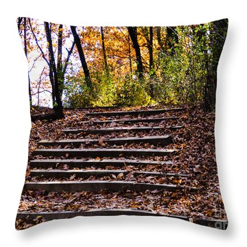 Wooded Stairs Throw Pillow