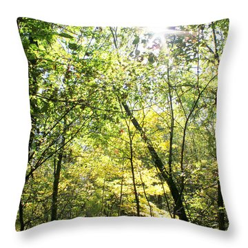 Wooded Sunshine Throw Pillow