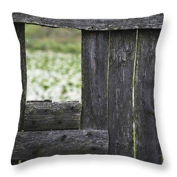Wooden Blind Throw Pillow