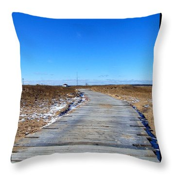 Plum Island Throw Pillow