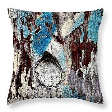 Wooden Wall 7 Throw Pillow