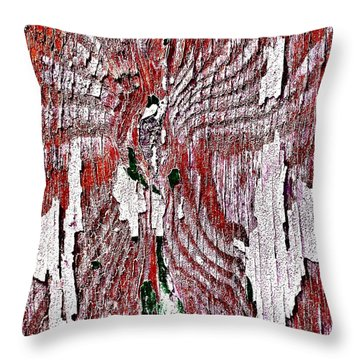 Wooden Wall 8 Throw Pillow by Jason Michael Roust