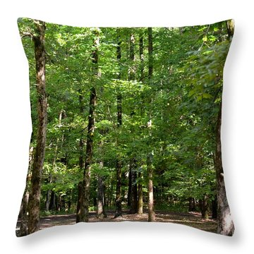 Woodforest 2013 Throw Pillow by Maria Urso
