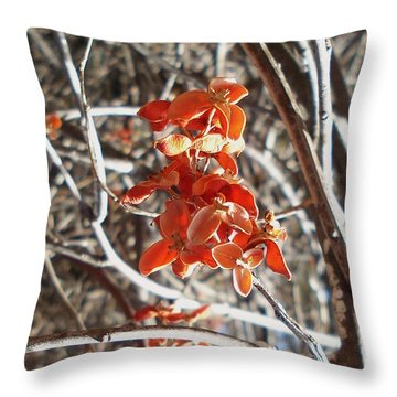 Woodland Beauty 2 Throw Pillow