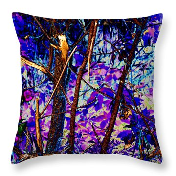 Woodland Throw Pillow by Carol Lynch