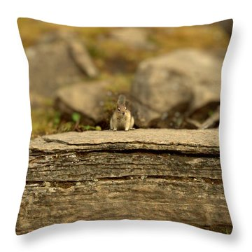 Woodland Critter Throw Pillow
