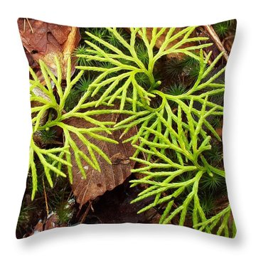 Throw Pillow featuring the photograph Woodland Design by Joy Nichols