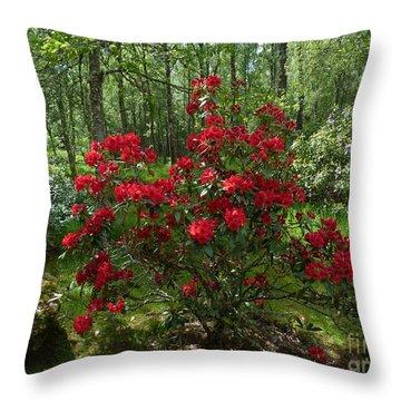 Throw Pillow featuring the photograph Azalea Woodland Garden by Phil Banks