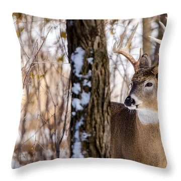 Woodland Outlaw Throw Pillow