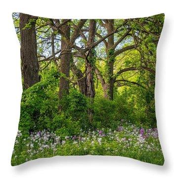 Woodland Phlox 2 Throw Pillow by Steve Harrington