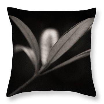 Woodland - Study 6 Throw Pillow