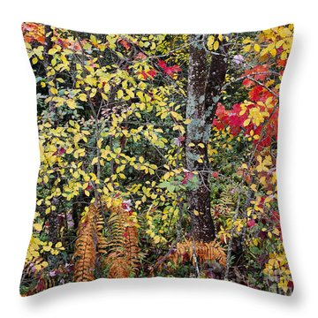 Throw Pillow featuring the photograph Woodland Tapestry by Alan L Graham