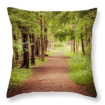 Woodland Trail Throw Pillow by Sara Frank