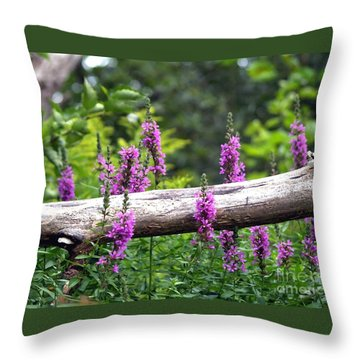 Woodland Treasures Throw Pillow by Susan  Dimitrakopoulos