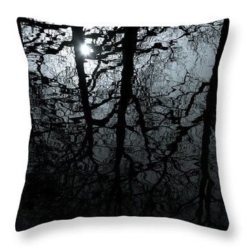 Woodland Waters Throw Pillow by Dave Bowman