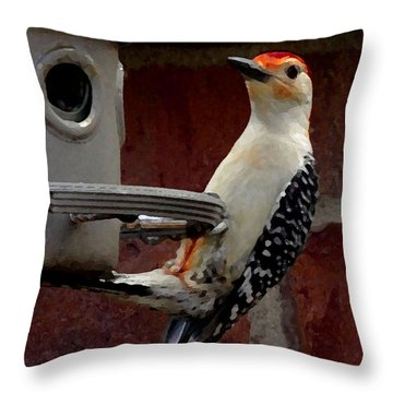Throw Pillow featuring the photograph Woodpecker Red Bellied by James C Thomas