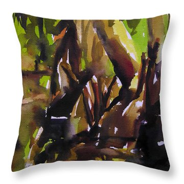 Woods And Creek 2 Throw Pillow by Julianne Felton