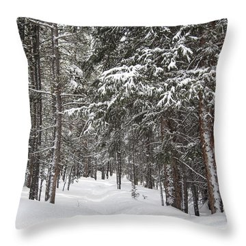 Woods In Winter Throw Pillow by Eric Glaser