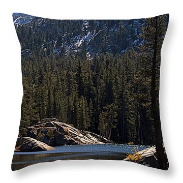 Woods Lake Throw Pillow