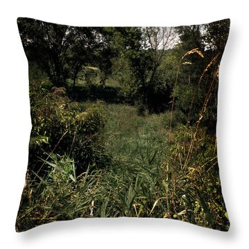 Throw Pillow featuring the photograph Woods Near My Home by Scott Kingery
