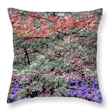 Throw Pillow featuring the photograph Woods Of Color by Kellice Swaggerty