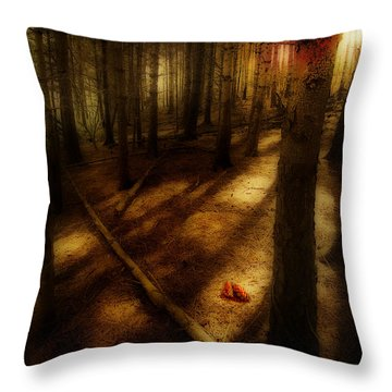 Throw Pillow featuring the photograph Woods With Pine Cones by Meirion Matthias