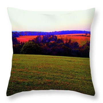Woodstock - Farm - Yasgurs Throw Pillow