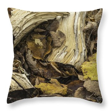 Woodwork 4 Throw Pillow by Michael Canning